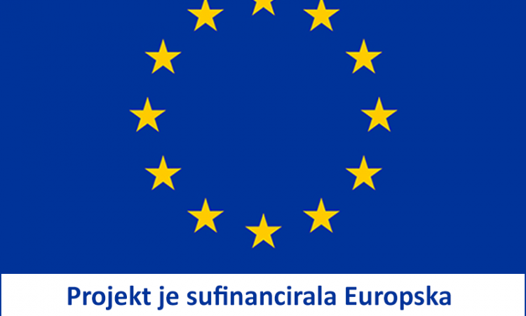 european-union-flag_1.png